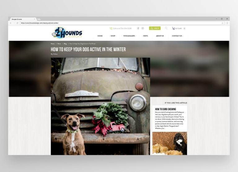 """2Hounds Design post, """"Як підтримувати собаку активно взимку"""""""